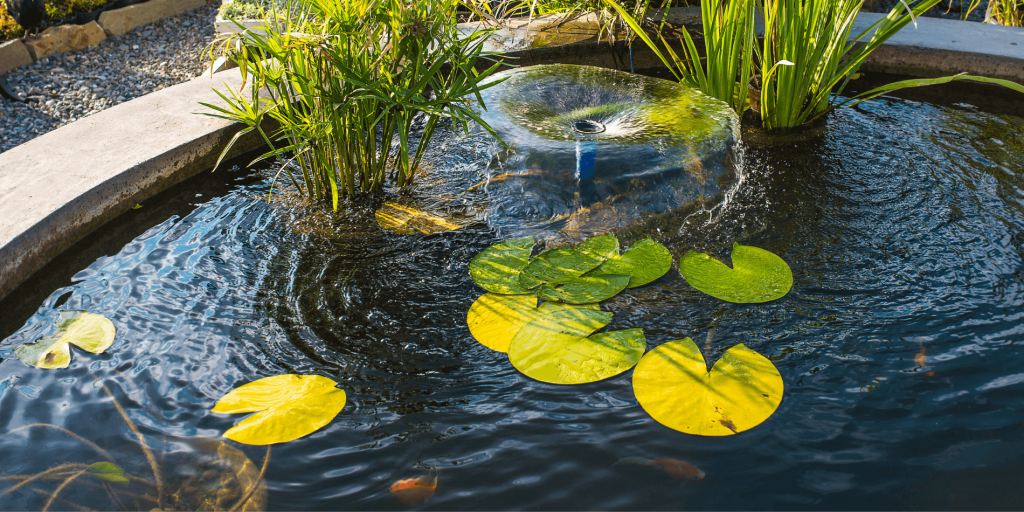 koi pond with water features in backyard